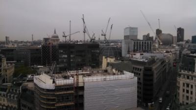 The Crane is London's honorary bird